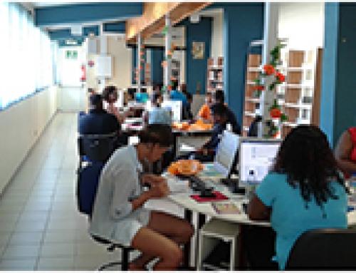 Succès de la JNDJ – CLLAJ en Martinique