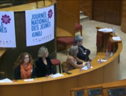 Colloque CESE – JNDJ 2012 : Table Ronde N°4